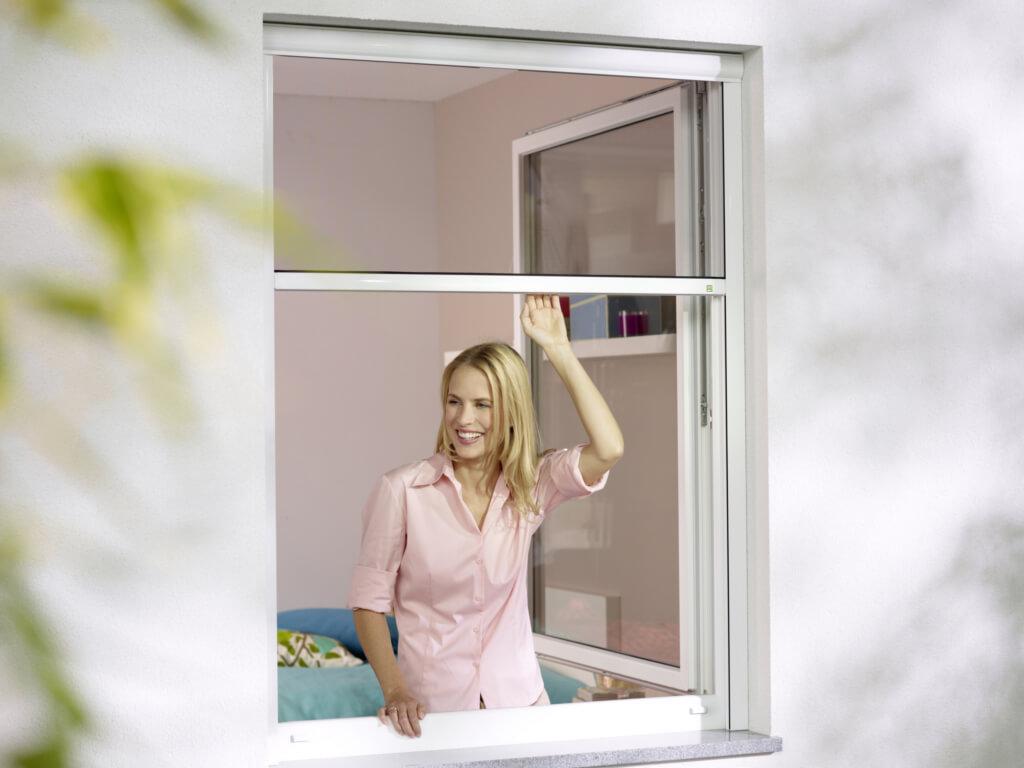 Rollos für Fenster