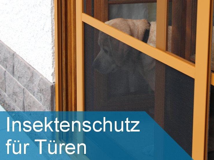 LiSA - Insektenschutz für Türen