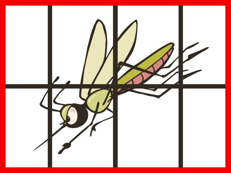 Logo des FliegengitterSpezialisten
