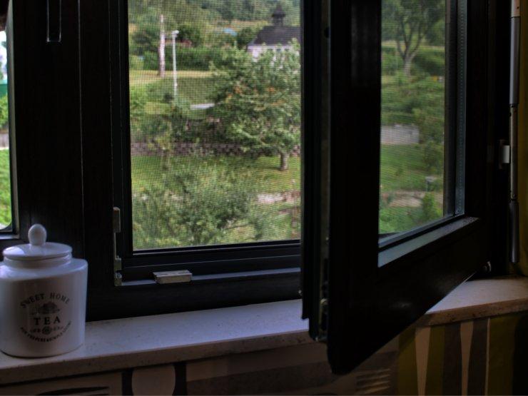 Insektenschutzfenster